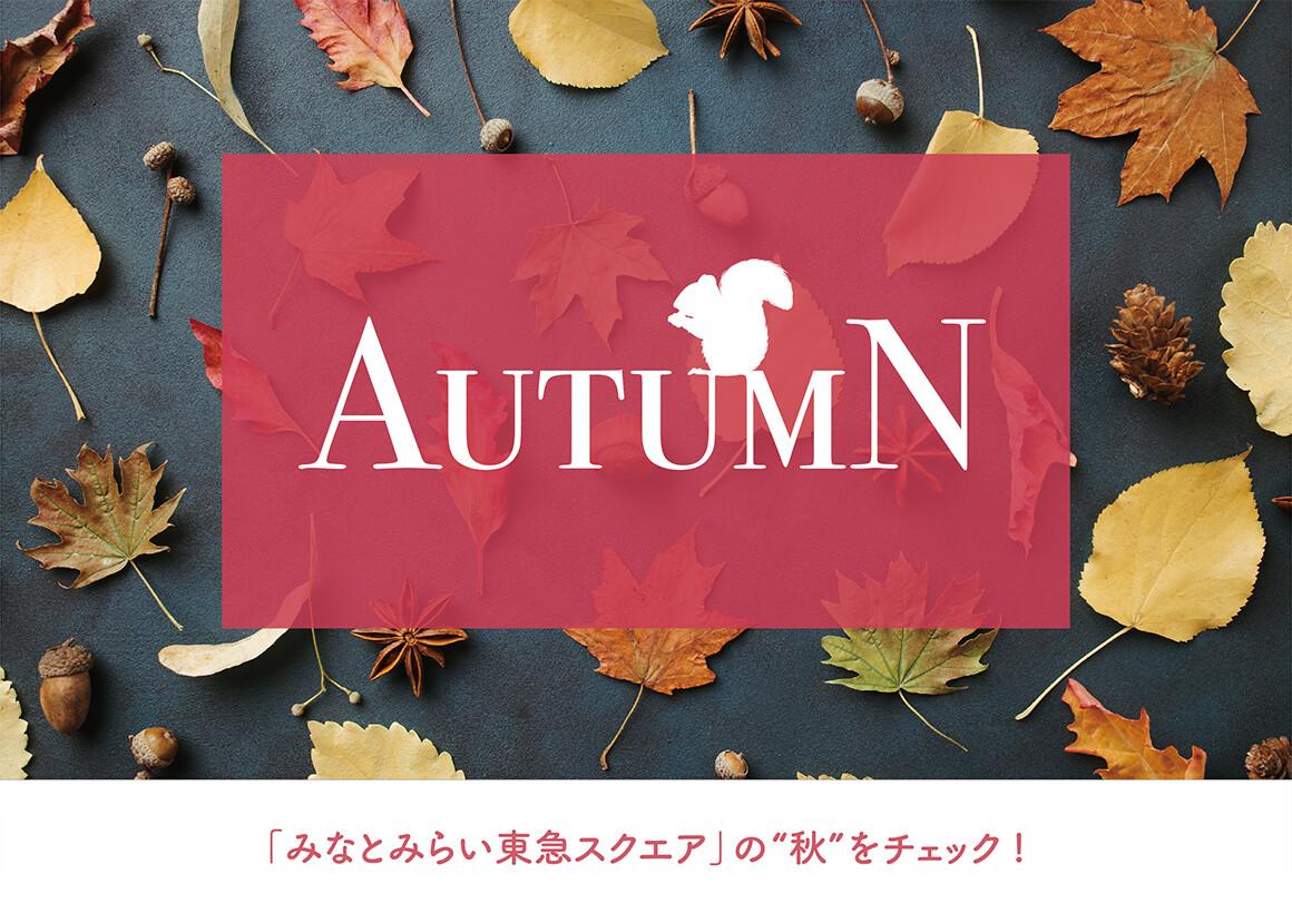 AUTUMN みなとみらい東急スクエアの秋をチェック!