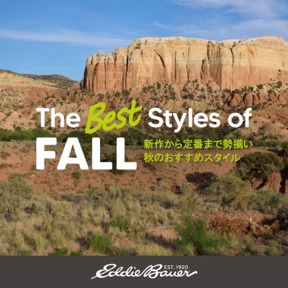 The Best Styles of FALL