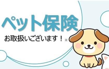 ペット保険のお取り扱いございます!!