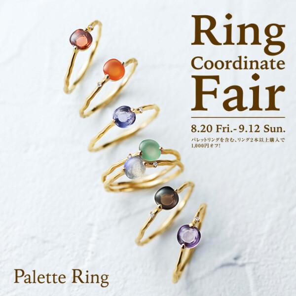 Ring Coordinate Fair