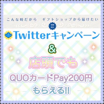 QUOカードPay200円プレゼント☆